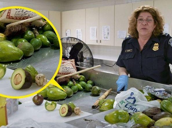လေဆိပ်မှာ အသိမ်းခံရတဲ့အစားအစာတွေကို တာဝန်ရှိသူတွေက ဘယ်လိုလုပ်ပစ်သလဲ