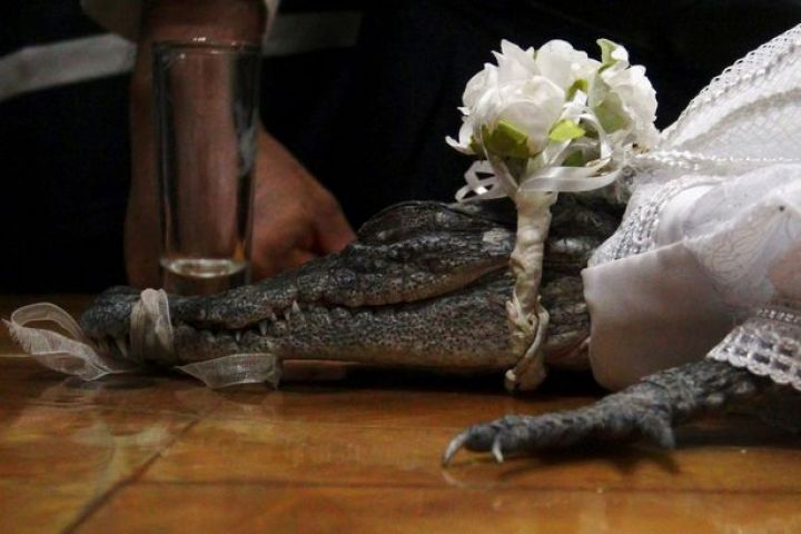 A-female-reptile-is-pictured-in-a-traditional-ancestral-wedding-ceremony-between-Victor-Aguilar-May.jpg