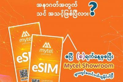 E-sim-Pic-1.jpg