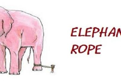 The-Elephant-Rope-Inspirational-Short-Stories.jpg