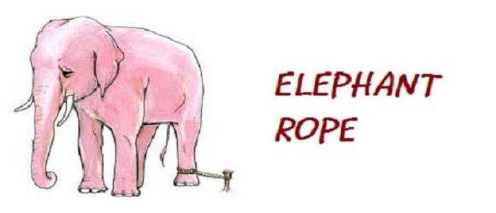 The-Elephant-Rope-Inspirational-Short-Stories.jpg
