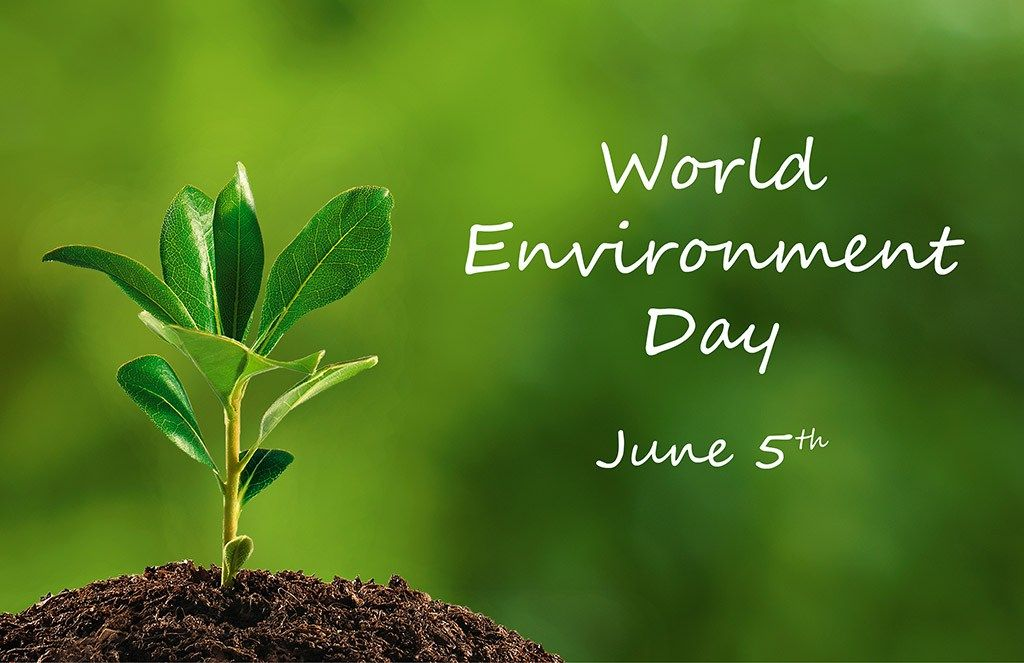 World-Environment-Day-HD-wallpaper.jpg