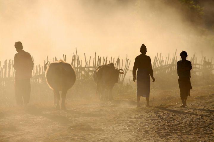 cattle-dealers-in-remote-village-in-putao-myanmar-PLLS99M.jpg