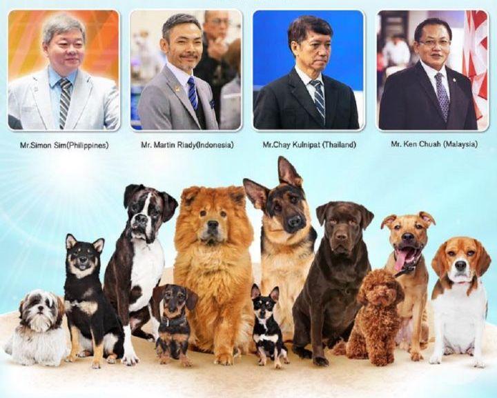 dog-show.jpg