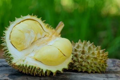durian-king-of-fruits-for-summer-PZMDQB4.jpg