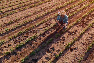 farmer-with-drone-remote-controller-in-soybean-B5WHNTY-e1565766079699.jpg