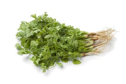 fresh-cilantro-with-roots.jpg