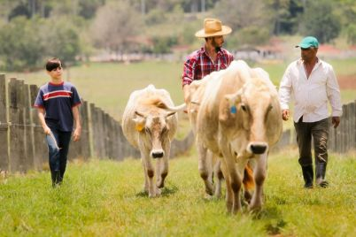 grandfather-father-child-pasturing-cows-in-family-PS2MKHK-e1564404833164.jpg