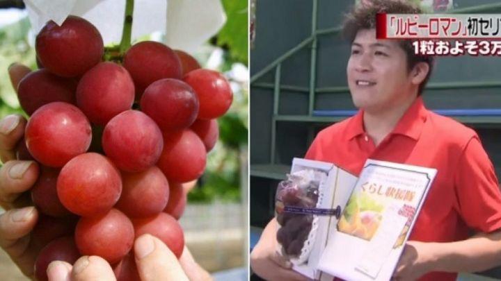 grapes-feature-e1468020761250-1280x720.jpg