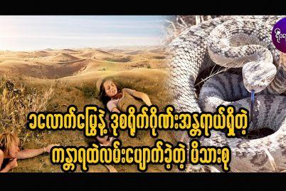 khaloud_snake.jpg