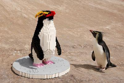 lego-penguin.jpg