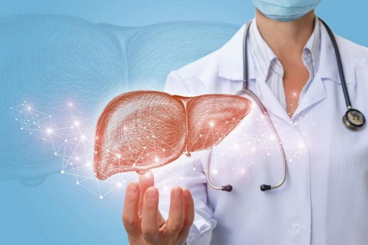 liver-and-doctor.jpg