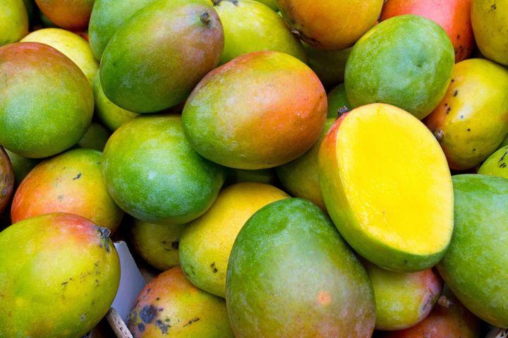 mangos-PU337EK.jpg