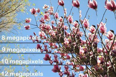 megapixels-160rg02.jpg