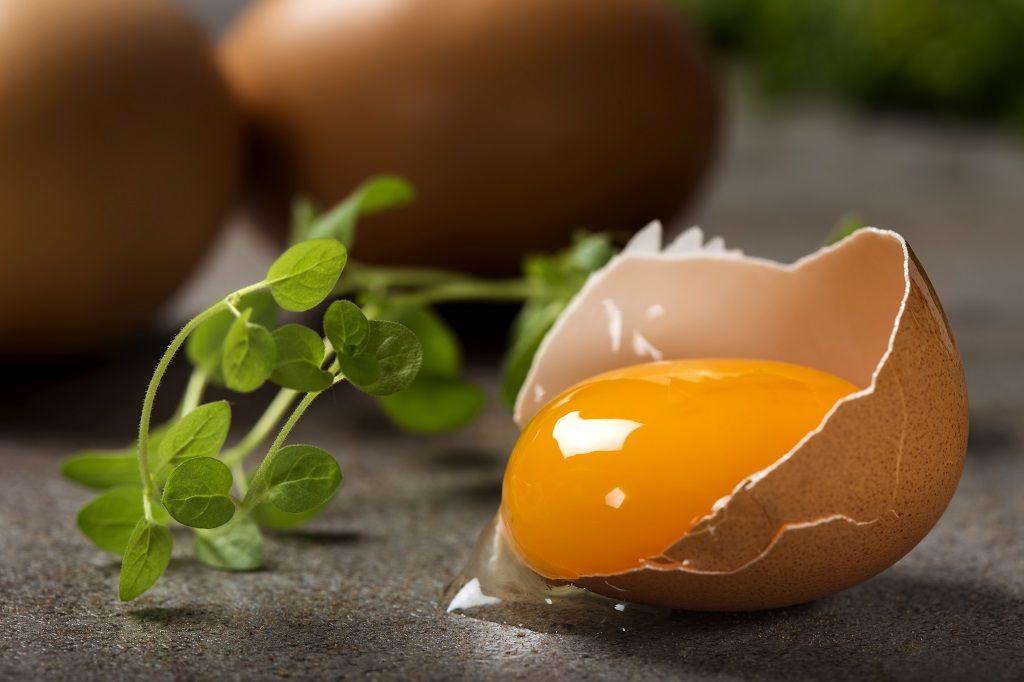 one-cracked-egg-with-yolk.jpg