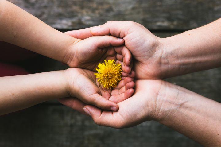 parent-and-child-hands-handing-flowers-PWCMEY6.jpg