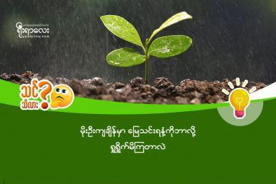 rain-e1565769931810.jpg