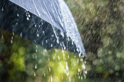 rain-on-umbrella-P4W4QF7.jpg